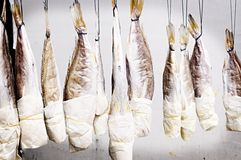 Drying Fish Lomo Royalty Free Stock Photography