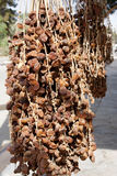 Drying of fresh dates in ancient city of Palmyra Royalty Free Stock Images