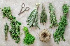 Drying fresh herbs and greenery for spice food on stone kitchen desk background top view pattern Royalty Free Stock Photos