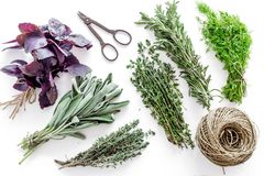 Drying fresh herbs and greenery for spice food on white kitchen desk background top view pattern. Drying fresh herbs and greenery for spice home food on white stock photo