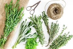 Drying fresh herbs and greenery for spice food on white kitchen desk background top view pattern Stock Images