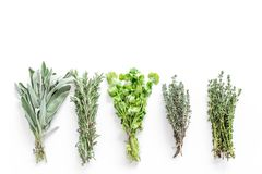 Drying fresh herbs and greenery for spice food on white kitchen desk background top view space for text Royalty Free Stock Photography