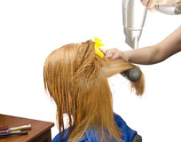 Drying ginger  painted  hair with the hairdrye Stock Photo