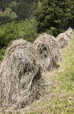 Drying hay at haystacks in Pustertal, Austria. Mowed grass is collected in hayricks for drying against agricultural slopes along the Pustertaler Höhenstrasse, a Stock Photos