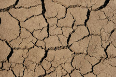 Drying mud cracks Stock Image