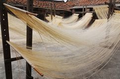 Drying noodles Royalty Free Stock Photography