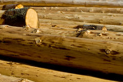 Drying Out New Logs Royalty Free Stock Photo