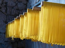 Drying Pasta stock image