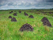 Drying peat. Rural ireland royalty free stock image