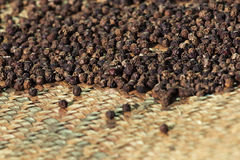 Drying Pepper Royalty Free Stock Images