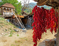 Drying peppers in an old traditional manner. Outdoor drying pepper in an old, traditional manner. Peppers are strung ingo wreaths. In the background there, in Stock Photography