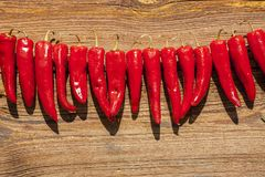 Drying peppers in the sun. Stock Images