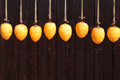 Drying persimmon by the sun Stock Image