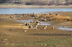 Drying pond Royalty Free Stock Image