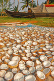 Drying and Processing Coconut Royalty Free Stock Photo