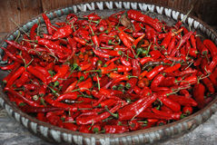 Drying red pepper Stock Photo