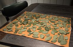 Drying sage leaves on kitchen counter stock photos