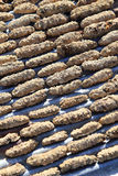 Drying Sea Cucumber Outdoor Stock Photography
