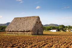Drying shed, Vinales Royalty Free Stock Photography