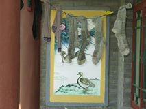Drying Socks Stock Images