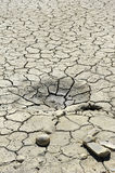 Drying soil. Background, soil is drying in a field Stock Photos