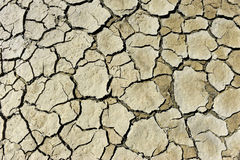 Drying soil Royalty Free Stock Photos