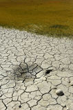 Drying soil. Background, soil is drying in a meadow Royalty Free Stock Photo