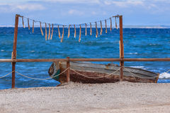 Drying squid. Arms of squid seafood drying in the sun on lesbos island, Greece Royalty Free Stock Photo