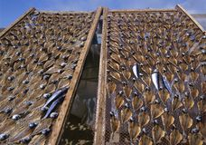 Drying stockfish Stock Photography