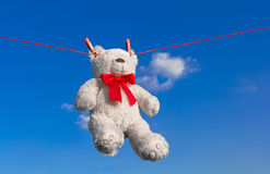 Drying teddy bear on a rope Stock Photo