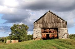 Tobacco Barn stock photography