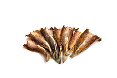 Drying up salted fish. Drying up salted snake-head fish Stock Image