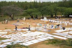 Drying washing - Chettinad - Tamil Nadu - India. Drying washing in a field near a village in the Chettinad area of Tamil Nadu in Southern India stock photo