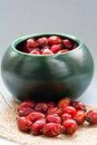 Drying Wild rose hip fruit Stock Image