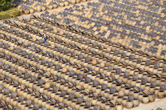 The drying yard of brewing soy sauce Royalty Free Stock Photos