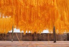 dryingnudlar Royaltyfri Fotografi