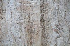 Dryluje tło tekstury Zgłębia narysy i pęknięcia na brudnych, uszkadzających białych tło, zdjęcie royalty free