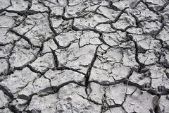 Dryness Royalty Free Stock Photography