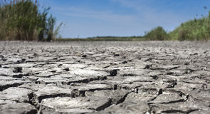 Dryness. Surface of an arid lake. Broken texture of dry surface Stock Image