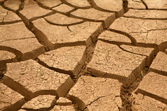 Dryness Royalty Free Stock Image