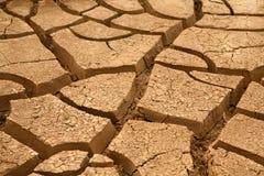 Free Dryness Royalty Free Stock Image - 6563576