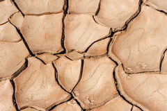Dryness in the desert Stock Images