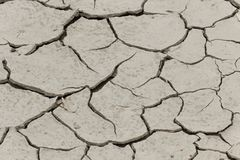 Dryness, dry ground in Corsica, France, Europe Royalty Free Stock Photography