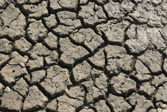 Dryness Royalty Free Stock Images