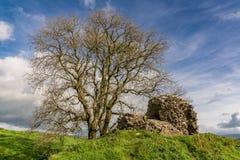 Dryslwyn slott, Carmarthenshire, Dyfed, Wales, UK Royaltyfri Foto