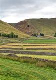 Drystone стены отделяют красочные поля, водя к пропуску ` s Winnat, пиковый район стоковая фотография rf