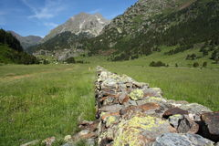 Drystone hedge across alpine meadow Royalty Free Stock Photo