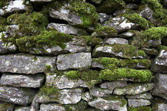 Drystone wall detail Royalty Free Stock Photo
