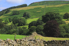 Drystone walls and fields royalty free stock images