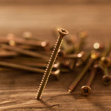 Drywall Screw. In close-up Stock Image